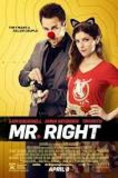 Pan Idealny - Mr Right *2015* [1080p] [10bit] [BluRay] [AC3] [x265-PLUS] [Lektor PL]