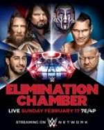 WWE Elimination Chamber 2019 (2019) [17.02] [WEB-DL] [ENG] [MP4]