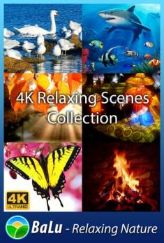 4K Relaxing Scenes Collection: BaLu Relaxing Nature(2017)[WEBRip 2160p AAC] [ENG]