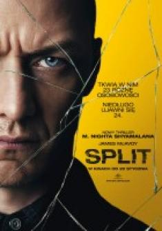 SPLit *2017* [HD-TS.x264-CPG] [ENG]