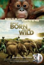 Dzikie z natury 3D - Born to Be Wild 2011 [miniHD] [1080p.BluRay.x264.HOU.AC3-Leon 345] [Napisy PL]