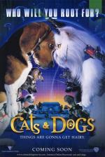Psy i koty - Cats & Dogs (2001) [DVDRip.XviD] [Dubbing PL] [D.T.A 26]