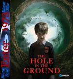 The Hole in the Ground (2019) [1080P] [WEB.DL] [H264] [AC3-E1973] [NAPISY PL]