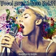 VA - Vocal Drum & Bass Vol.11 [Compiled by Zebyte] (2017) [mp3@256-320]
