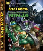Batman kontra Wojownicze Żółwie Ninja / Batman Vs. Teenage Mutant Ninja Turtles (2019) [720p] [BRRip] [XviD] [AC3-LTN] [Lektor PL]