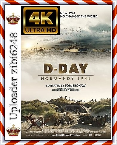 D-Day Normandy 1944 *2014* [DOCU] [2160p] [BluRay] [x265] [10bit] [SDR.DTS-HD.MA.5.1-SWTYBLZ] [ENG] [zibi6248]