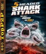 Pięciogłowy rekin atakuje / 5 Headed Shark Attack (2017) [720p] [BluRay] [AC3] [x264-J] [Lektor PL]