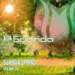 VA - Suanda Spring Vol.6 (2019)            [MP3@320]