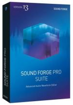 MAGIX SOUND FORGE Pro Suite 13.0.0 Build 100 - 64bit [ENG] [Crack analog patcher] [azjatycki]