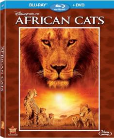 Afrykańskie Koty-African Cats (2011)[BRRip.1080p.x265-HEVC-by alE13.AC3] [Lektor i Napisy PL] [ENG]