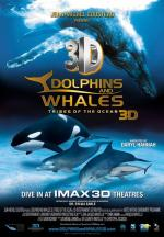 Delfiny i wieloryby 3D. PLemiona oceanów - Dolphins and Whales 3D Tribes of the Ocean *2008* [miniHD] [1080p.BluRay.x264.HOU.AC3-Leon 345] [ Lektor PL]