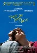 Tamte dni, tamte noce / Call Me by Your Name (2017) [BDRip] [XviD-KiT] [Lektor PL]