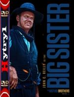 Bracia Sisters - The Sisters Brothers (2018) [BDRip] [XviD] [MPEG-KiT] [Lektor PL] [H-1]