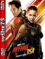 Ant-Man i Osa - Ant-Man and the Wasp *2018* [BDRip] [XviD-KiT] [Dubbing PL]