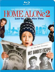 Kevin sam w Nowym Jorku - Home Alone 2: Lost in New York *1992* [1080p.DTS-HD MA 5.1.AC3.BluRay.x264-SONDA] [Lektor i Napisy PL] [ENG] [AT-TEAM]