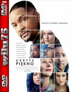 Ukryte piękno - Collateral Beauty *2016* [480p] [BDRip] [AC3] [XviD-KRT] [Lektor PL]