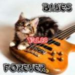 VA - Blues Forever, Vol.88 (2019) [mp3@320kbps]