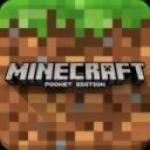 Minecraft - Pocket Edition v1.6.1 [PL/ENG] [APK]