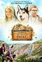 Timber, pies-odkrywca / Timber the Treasure Dog (2015) [WEB-DL] [XviD-DiDi] [Lektor PL]