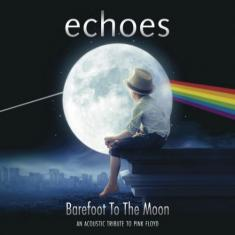 Echoes - Barefoot To The Moon: An Acoustic Tribute To Pink Floyd (2016) [Blu-Ray 1080i]