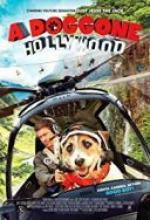 Piesek z Hollywood / A Doggone Hollywood (2017) [720p] [HDTV] [XviD] [AC3-MR] [Lektor PL]