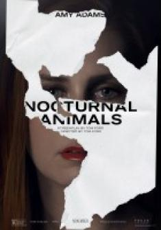 Zwierzęta nocy - Nocturnal Animals *2016* PLSUBBED [1080p] [WEBRip] [AAC2.0] [H264] [ENG]