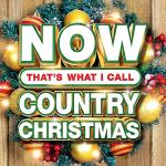 VA - Now Thats What I Call Country Christmas 2019 (2019) [mp3@320]