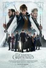 Fantastic Beasts The Crimes of Grindelwald *2018* [720p] [KORSUB] [HDRip] [XviD] [MP3] [STUTTERSHIT] [ENG]