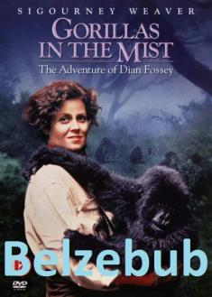 Goryle we mgle - Gorillas in the Mist: The Story of Dian Fossey (1988) [CUSTOM.DVDRip.XviD-RETRO] [Lektor PL]