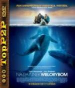 Na ratunek wielorybom / Big Miracle (2012) [MULTI] [720p] [BluRay] [x264-LTN] [Lektor PL]