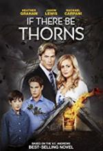 A jeśli ciernie - If There Be Thorns *2015* [BRRip.XviD-Nitro] [Lektor PL]