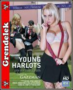 Harmonia - Young Harlots: Learn The Rules [2011] [HDTV] [1080p] [.mkv]