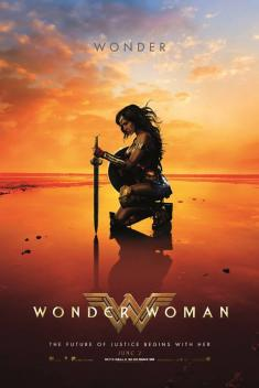 Wonder Woman *2017* [3D-HSBS] [1080p] [BluRay] [x265 - HEVC-10 bit] [AC3] [DUBBING PL]