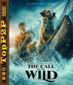 Zew krwi / The Call of the Wild (2020) [MD] [1080p] [WEB-DL] [x264-KiT] [Dubbing PL]