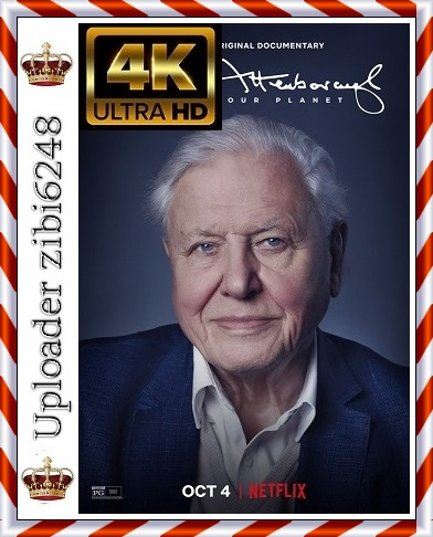 David.Attenborough.A.Life.on.Our.PLanet *2020* [2160p] [NF] [WEBRip] [DDP5.1.] [x265-NTb] [Napisy PL]  [zibi6248]