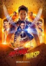 Ant-Man i Osa / Ant-Man and the Wasp (2018) [BDRip] [XviD-KiT] [Dubbing PL]
