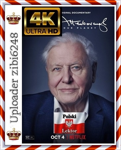 David Attenborough: Życie na naszej PLanecie - David Attenborough: A Life on Our PLanet *2020* [MULTi] [2160p] [NF] [WEBRip] [DDP5.1.] [x265-fHD] [POLSKI LEKTOR i NAPISY] [zibi6248]