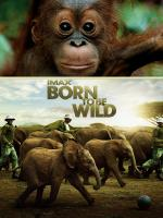 Born to Be Wild (2011) [Blu-Ray Remux,1080p] [ENG]