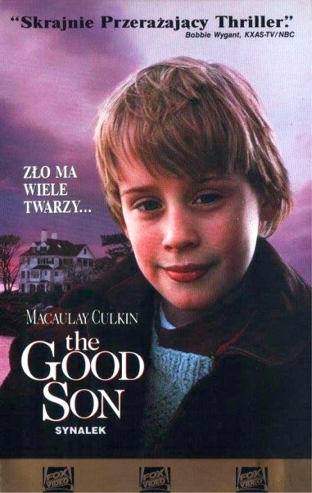 Synalek - The Good Son (1993) [m720p] [BluRay.x264-LTN] [AC-3] [Lektor PL]