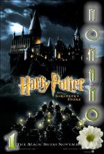 Harry Potter i Kamień Filozoficzny - Harry Potter and the Sorcerer's Stone *2001* [BRRip.x264-NoNaNo] [Dubbing PL]