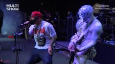Limp Bizkit - Live At Monsters Of Rock Brasil [2013 HDTV 1080i]