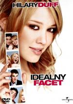Idealny facet / The Perfect Man (2005) [DVDRip] [XviD-GR4PE] [Lektor PL]